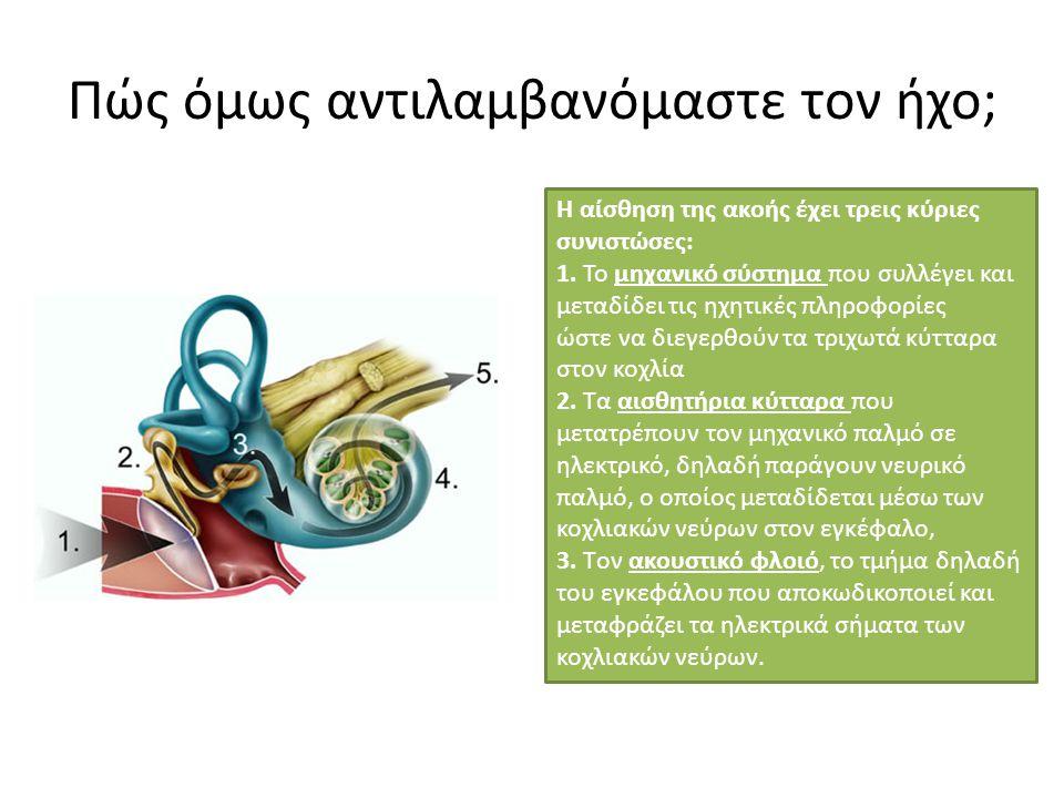 Πώς όμως αντιλαμβανόμαστε τον ήχο; Η αίσθηση της ακοής έχει τρεις κύριες συνιστώσες: 1. Το μηχανικό σύστημα που συλλέγει και μεταδίδει τις ηχητικές πλ