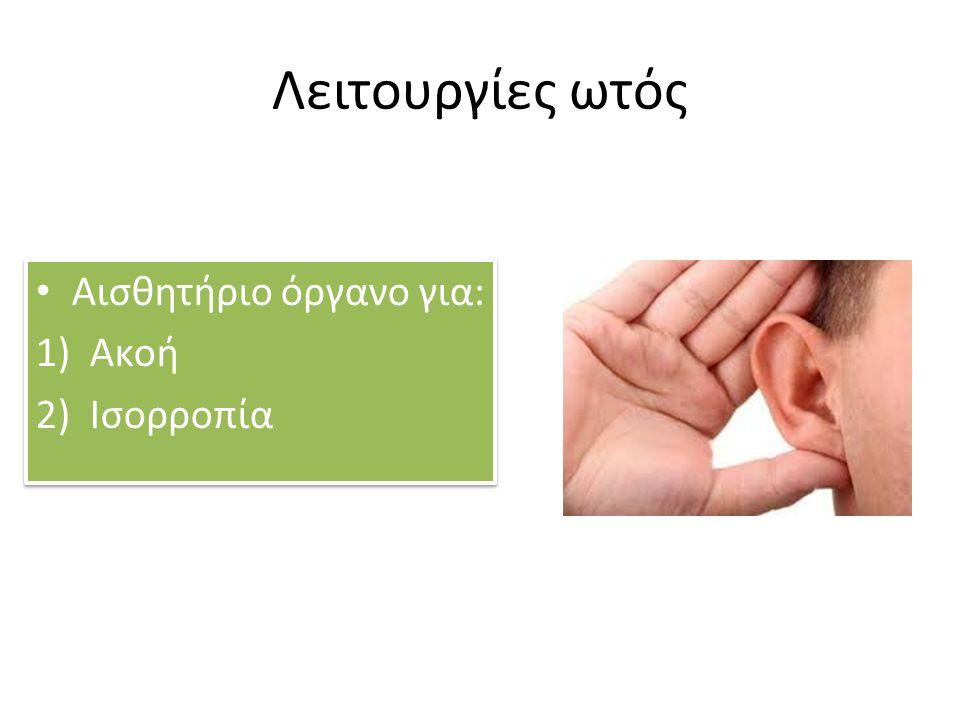Λειτουργίες ωτός Αισθητήριο όργανο για: 1)Ακοή 2)Ισορροπία Αισθητήριο όργανο για: 1)Ακοή 2)Ισορροπία
