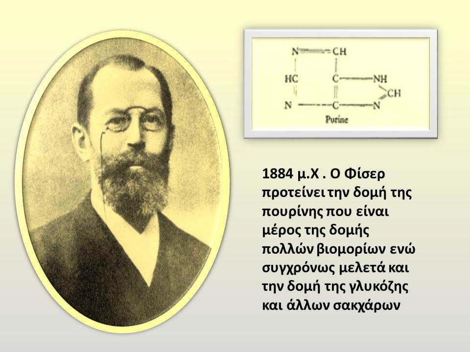 1884 μ. Χ. Ο Φίσερ προτείνει την δομή της πουρίνης που είναι μέρος της δομής πολλών βιομορίων ενώ συγχρόνως μελετά και την δομή της γλυκόζης και άλλων