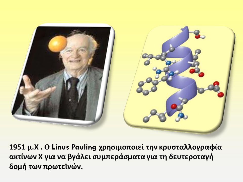 1951 μ. Χ. Ο Linus Pauling χρησιμοποιεί την κρυσταλλογραφία ακτίνων Χ για να βγάλει συμπεράσματα για τη δευτεροταγή δομή των πρωτεϊνών.