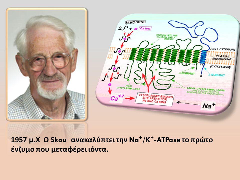 1957 μ. Χ Ο Skou ανακαλύπτει την Na ⁺ /K ⁺ -ATPase το πρώτο ένζυμο που μεταφέρει ιόντα.