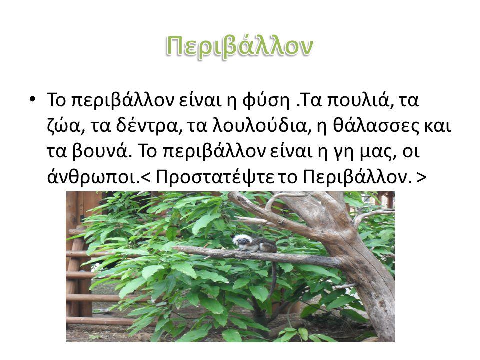 Το περιβάλλον είναι η φύση.Τα πουλιά, τα ζώα, τα δέντρα, τα λουλούδια, η θάλασσες και τα βουνά. Το περιβάλλον είναι η γη μας, οι άνθρωποι.
