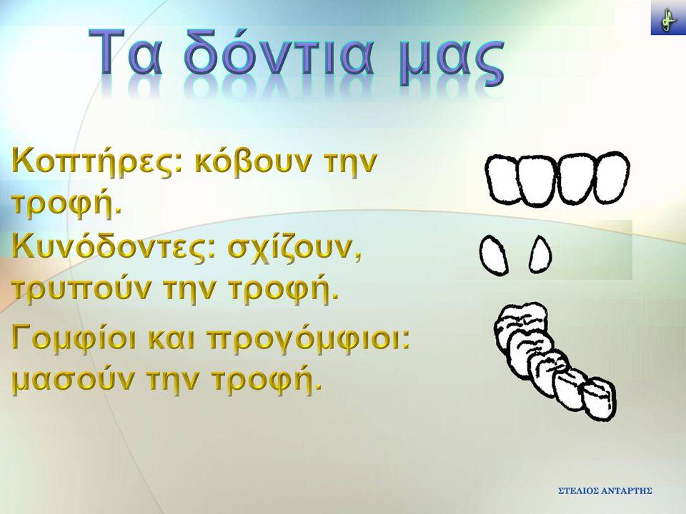 Η ΠΕΨΗ 1.Στο στόμα μασάμε τις τροφές 3.Οι τροφές κατεβαίνουν από τον οισοφάγο 2.