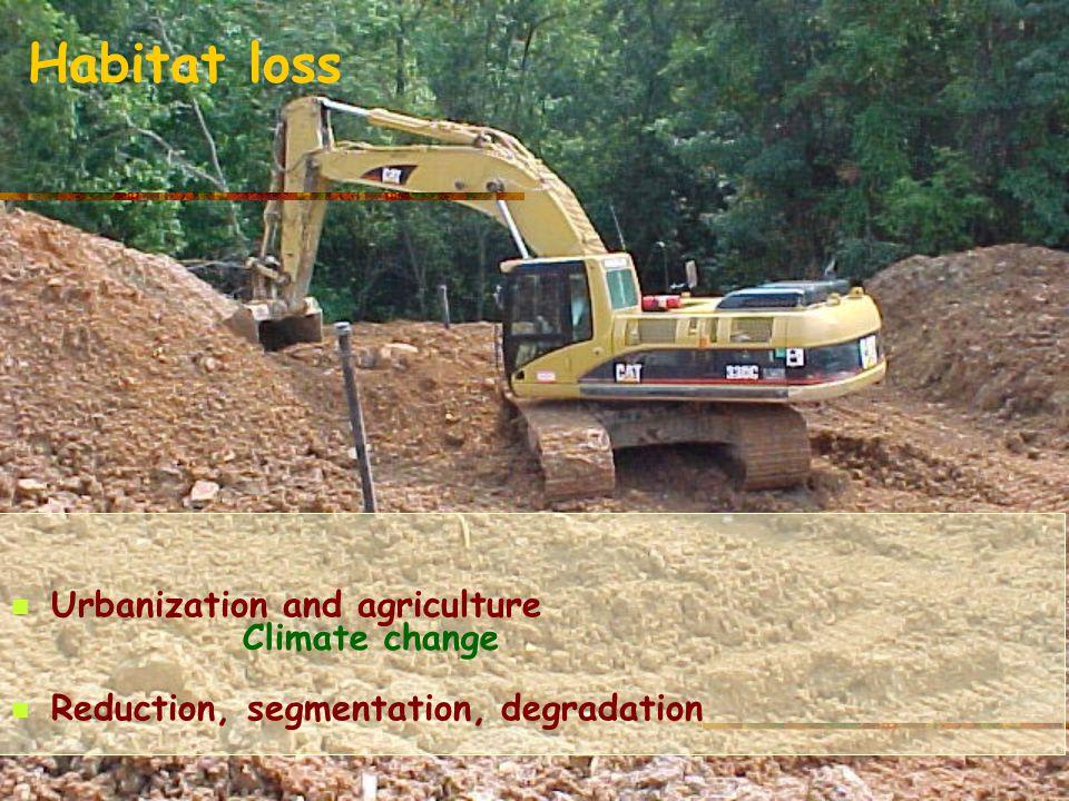 Habitat loss Climate change Urbanization and agriculture Reduction, segmentation, degradation