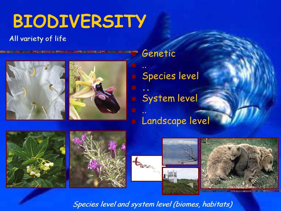 BIODIVERSITY Genetic..Species level.. System level..