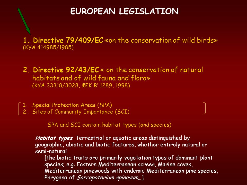 EUROPEAN LEGISLATION 1.