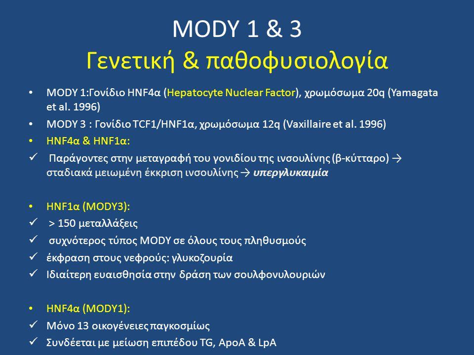 MODY 1 & 3 Γενετική & παθοφυσιολογία MODY 1:Γονίδιο HNF4α (Hepatocyte Nuclear Factor), χρωμόσωμα 20q (Yamagata et al. 1996) MODY 3 : Γονίδιο TCF1/HNF1