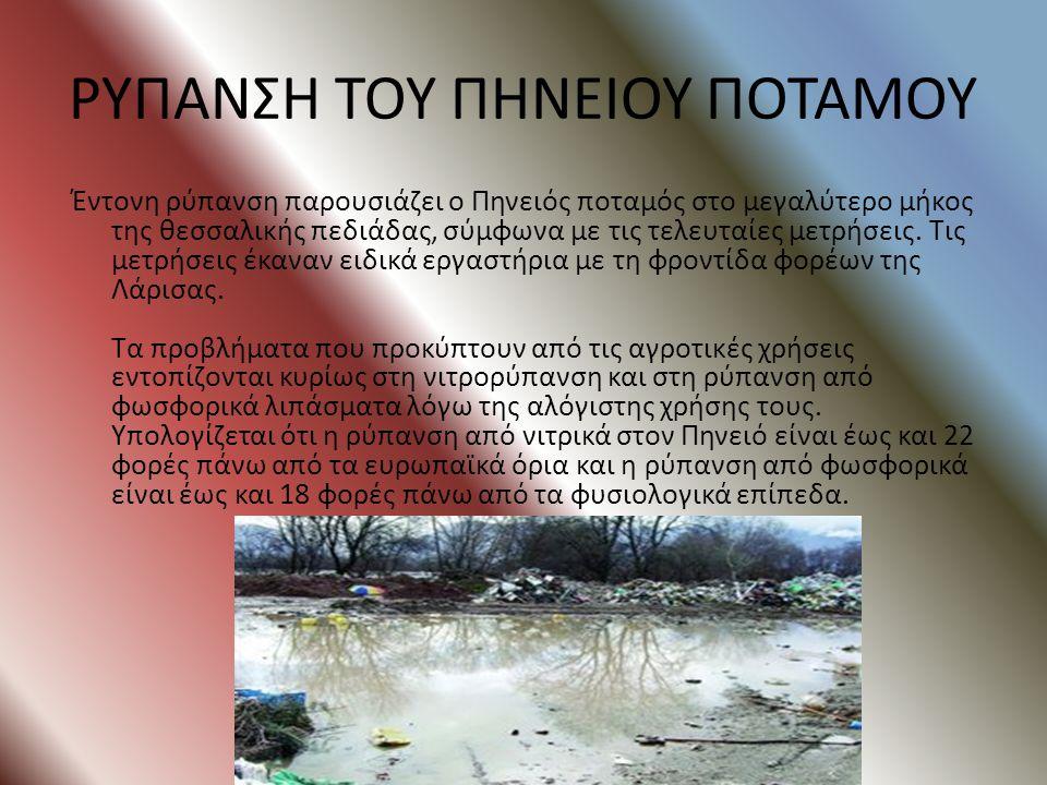 ΡΥΠΑΝΣΗ ΠΟΥ ΠΡΟΚΑΛΕΙ Ο ΕΥΡΩΤΑΣ ΣΤΗ ΜΕΣΟΓΕΙΟ Τα τελευταία χρόνια το ποτάμι έχει πληγεί από την ρίψη σκουπιδιών και μπάζων στις όχθες του, τα υπολείμματ