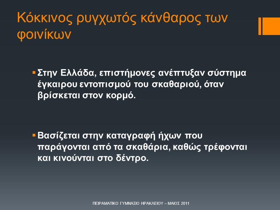Κόκκινος ρυγχωτός κάνθαρος των φοινίκων  Στην Ελλάδα, επιστήμονες ανέπτυξαν σύστημα έγκαιρου εντοπισμού του σκαθαριού, όταν βρίσκεται στον κορμό.  Β