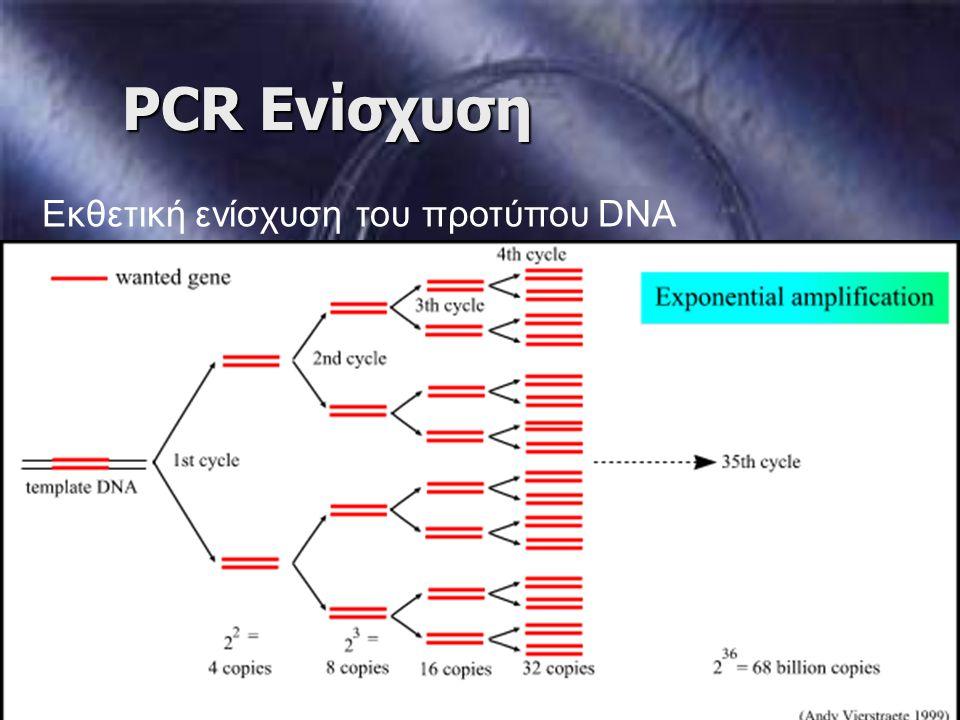 PCR Ενίσχυση Εκθετική ενίσχυση του προτύπου DNA