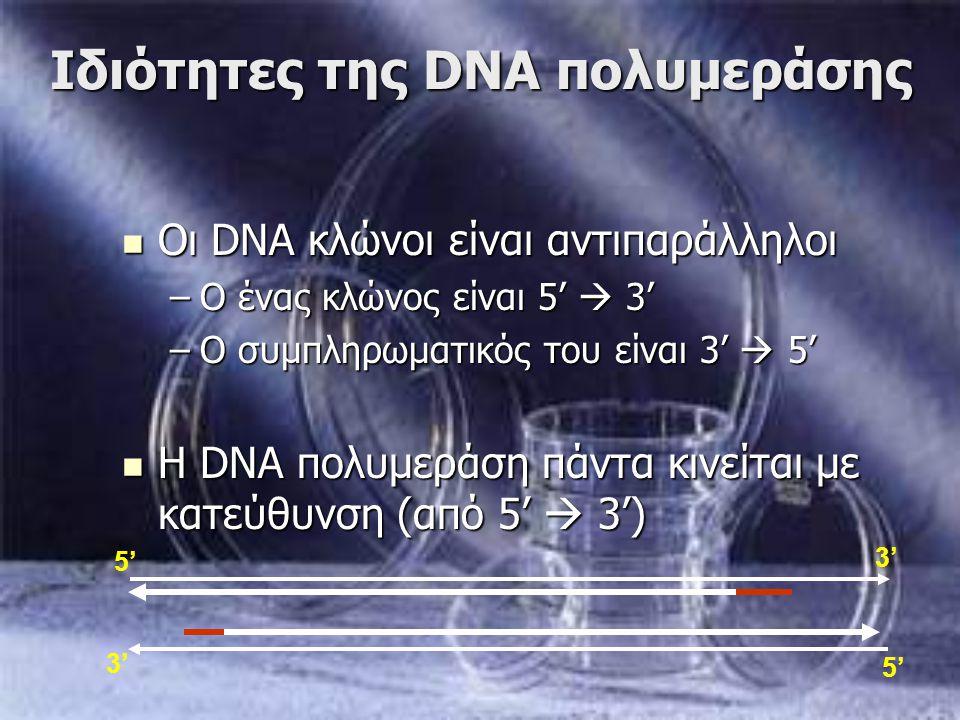 Ιδιότητες της DNA πολυμεράσης Οι DNA κλώνοι είναι αντιπαράλληλοι Οι DNA κλώνοι είναι αντιπαράλληλοι –Ο ένας κλώνος είναι 5'  3' –Ο συμπληρωματικός το