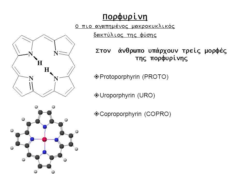  Protoporphyrin (PROTO) 2 proprionate / 2 vinyl / 4 methyl Isomers I →IX Haem b [καταλάσες, κυτοχρώμτα b, γλοβίνη, περοξιδάσες] Ηeαm c [κυτόχρωμα c Οξειδοαναγωγάσες]