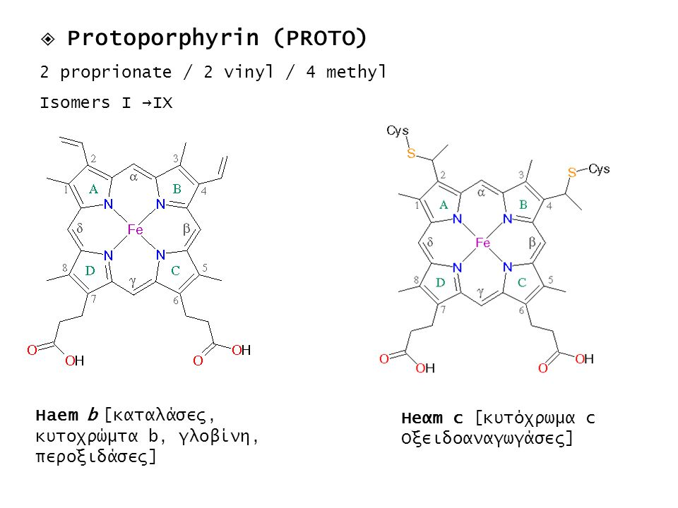  Protoporphyrin (PROTO) 2 proprionate / 2 vinyl / 4 methyl Isomers I →IX Haem b [καταλάσες, κυτοχρώμτα b, γλοβίνη, περοξιδάσες] Ηeαm c [κυτόχρωμα c Ο