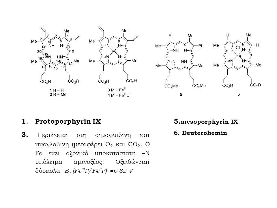 1.Protoporphyrin IX 3. Περιέχεται στη αιμογλοβίνη και μυογλοβίνη (μεταφέρει Ο 2 και CO 2. O Fe έχει αξονικό υποκαταστάτη –Ν υπόλειμα αμινοξέος. Οξειδώ