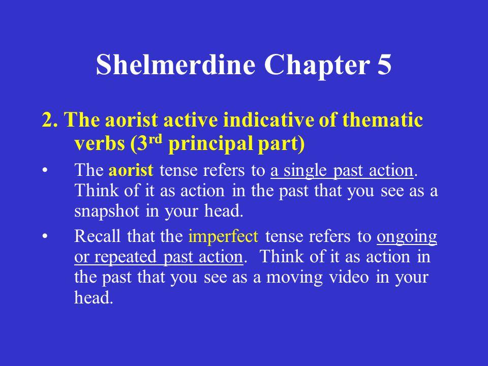 Shelmerdine Chapter 5 2.