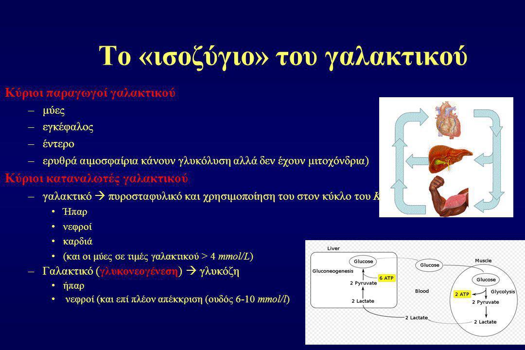 Το «ισοζύγιο» του γαλακτικού Κύριοι παραγωγοί γαλακτικού –μύες –εγκέφαλος –έντερο –ερυθρά αιμοσφαίρια κάνουν γλυκόλυση αλλά δεν έχουν μιτοχόνδρια) Κύρ