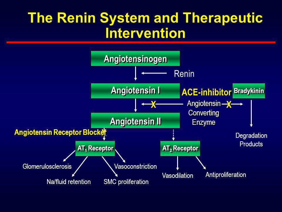 Λειτουργικές μεταβολές* Φυσική ιστορία της τύπου ΙΙ διαβητικής νεφροπάθειας Λευκωματινουρία Νεφρ. Ανεπάρκεια Τελ. σταδίου Κλινικός Διαβήτης τύπου ΙΙ Δ
