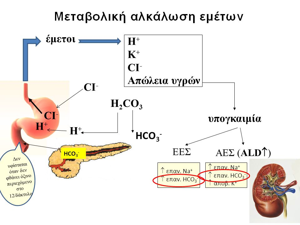 έμετοι Η + Κ + CI - Απώλεια υγρών υπογκαιμία H 2 CO 3 CI - HCO 3 - ΕΕΣ  επαν. Na +  επαν. HCO 3 - ΑΕΣ (ALD  )  επαν. Na +  επαν. HCO 3 -  αποβ.