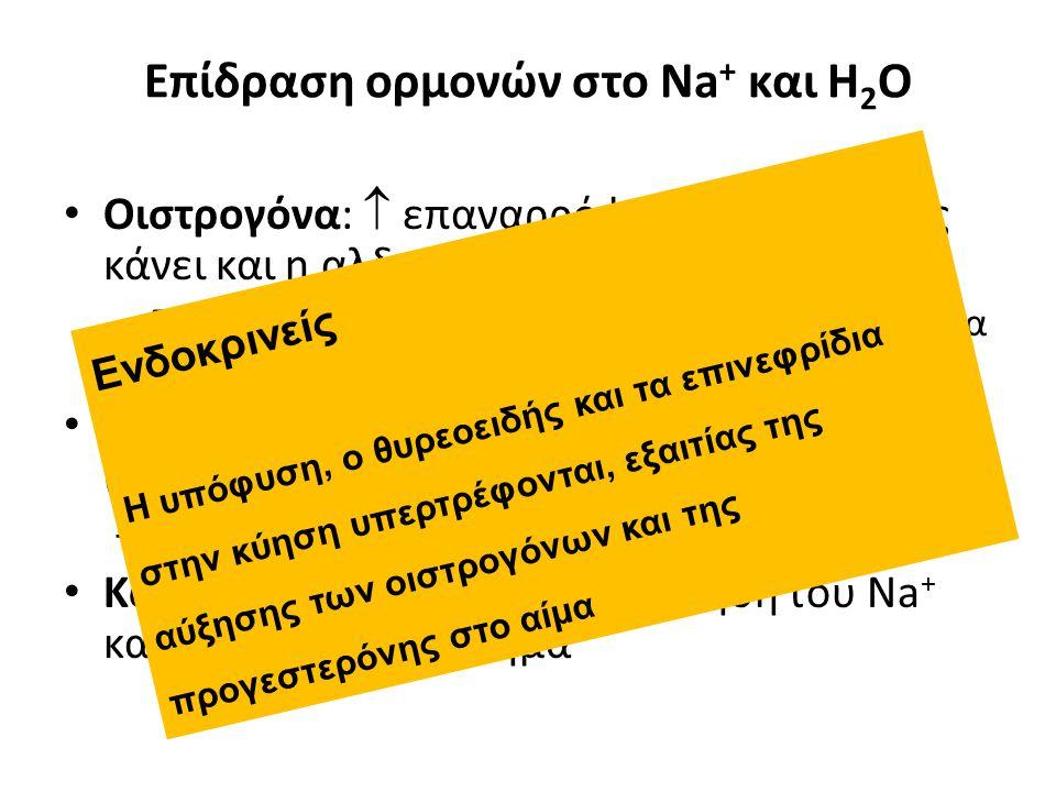 Επίδραση ορμονών στο Na + και H 2 O Οιστρογόνα:  επαναρρόφησης NaCl (όπως κάνει και η αλδοστερόνη) – Προάγουν την κατακράτηση H 2 O κατά τη διάρκεια των καταμήνιων κύκλων και της κύησης Προγεστερόνη:  επαναρρόφησης Na + (αναστέλλει την αλδοστερόνη) – Προάγει την απώλεια Na + και H 2 O Κορτικοειδή:  την επαναρρόφηση του Na + και προάγουν το οίδημα Ενδοκρινείς Η υπόφυση, ο θυρεοειδής και τα επινεφρίδια στην κύηση υπερτρέφονται, εξαιτίας της αύξησης των οιστρογόνων και της προγεστερόνης στο αίμα