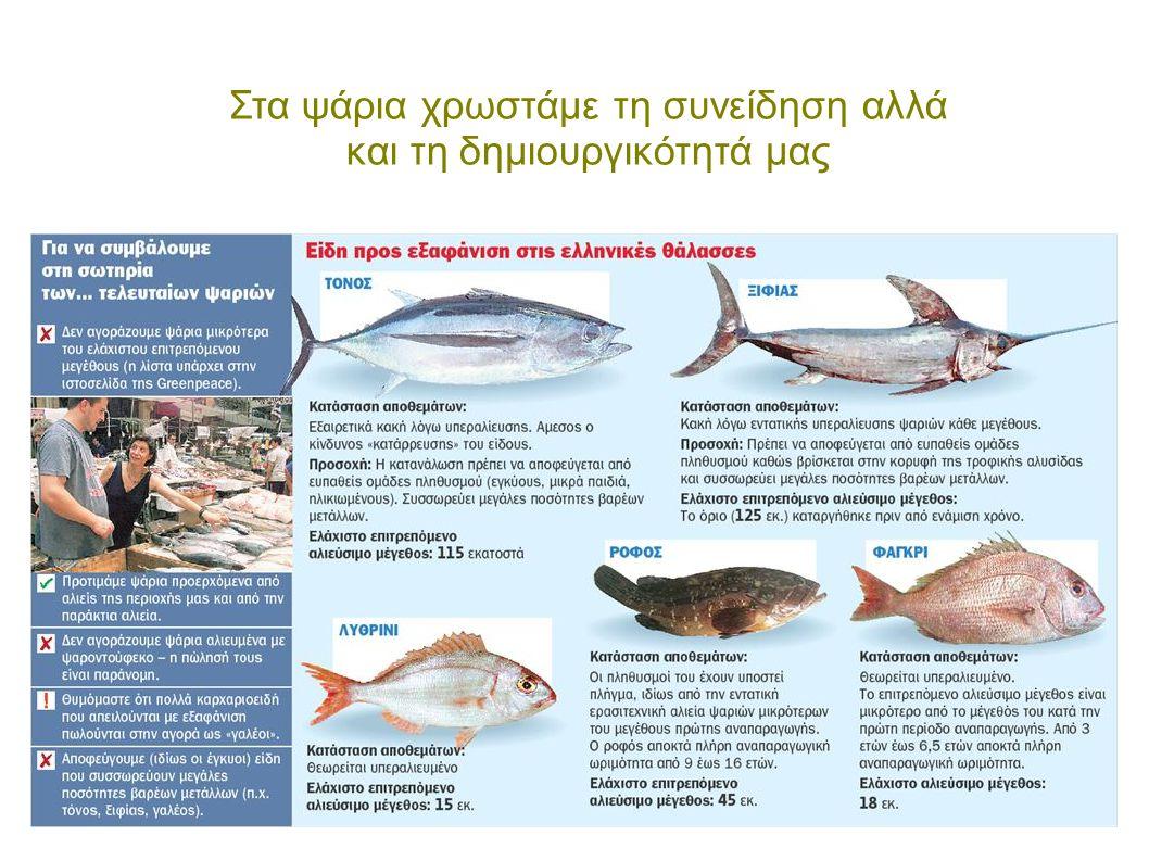 Στα ψάρια χρωστάμε τη συνείδηση αλλά και τη δημιουργικότητά μας