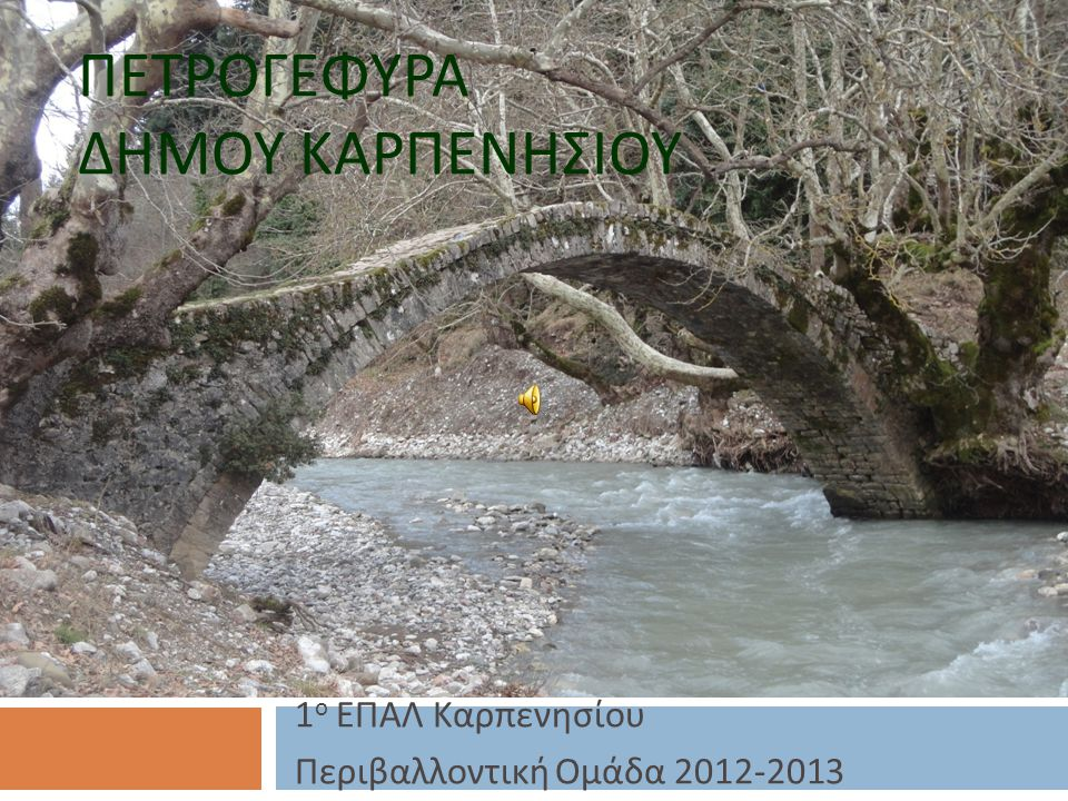 ΠΕΤΡΟΓΕΦΥΡΑ ΔΗΜΟΥ ΚΑΡΠΕΝΗΣΙΟΥ 1 ο ΕΠΑΛ Καρπενησίου Περιβαλλοντική Ομάδα 2012-2013