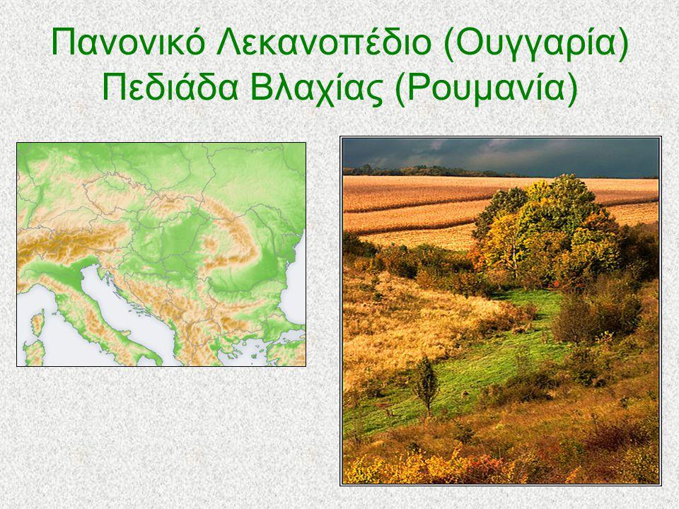 Πανονικό Λεκανοπέδιο (Ουγγαρία) Πεδιάδα Βλαχίας (Ρουμανία) Ανάμεσα στα Καρπάθια και τις Δειναρικές Άλπεις βρίσκεται το Παννονικό Λεκανοπέδιο, μια αρκετά μεγάλη και σημαντική πεδιάδα.