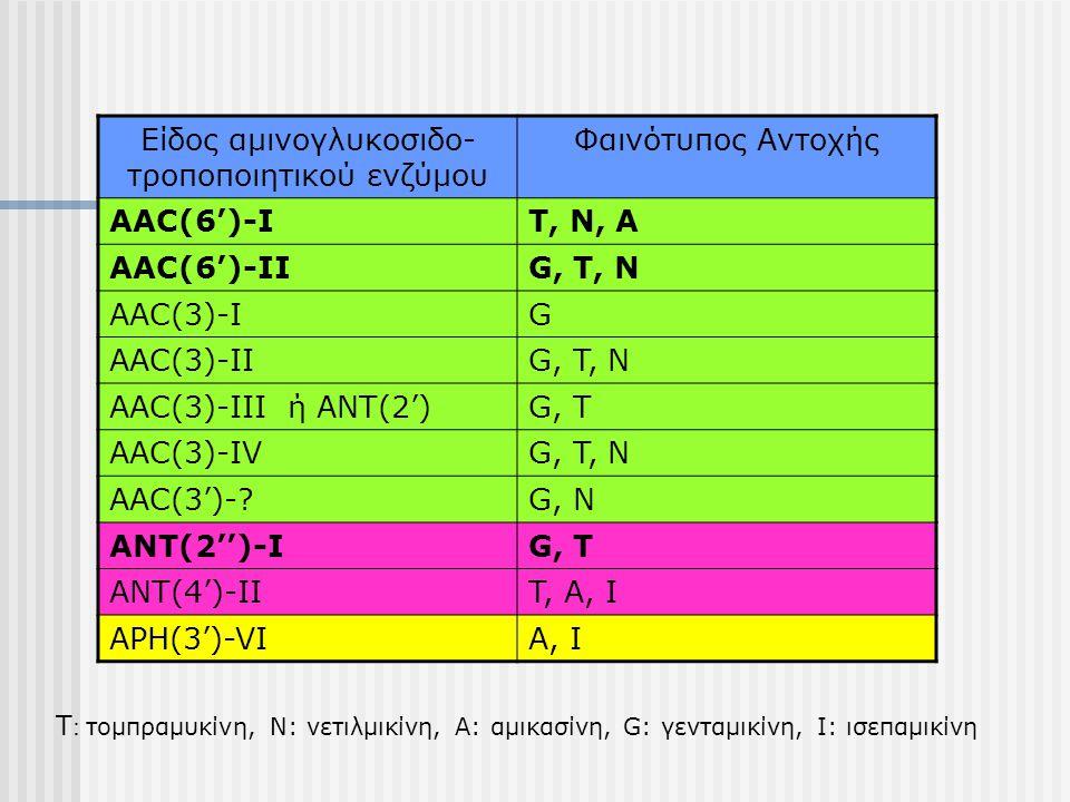 Είδος αμινογλυκοσιδο- τροποποιητικού ενζύμου Φαινότυπος Αντοχής AAC(6')-IT, N, A AAC(6')-IIG, T, N AAC(3)-IG AAC(3)-IIG, T, N AAC(3)-III ή ANT(2')G, T