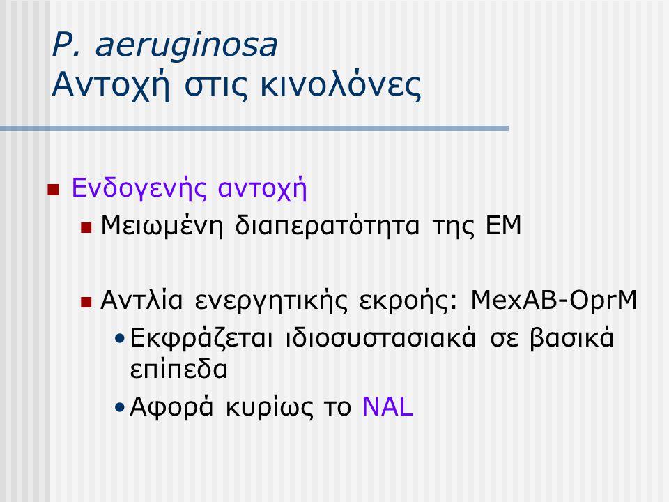 P. aeruginosa Αντοχή στις κινολόνες Ενδογενής αντοχή Μειωμένη διαπερατότητα της ΕΜ Αντλία ενεργητικής εκροής: MexAB-OprM Εκφράζεται ιδιοσυστασιακά σε