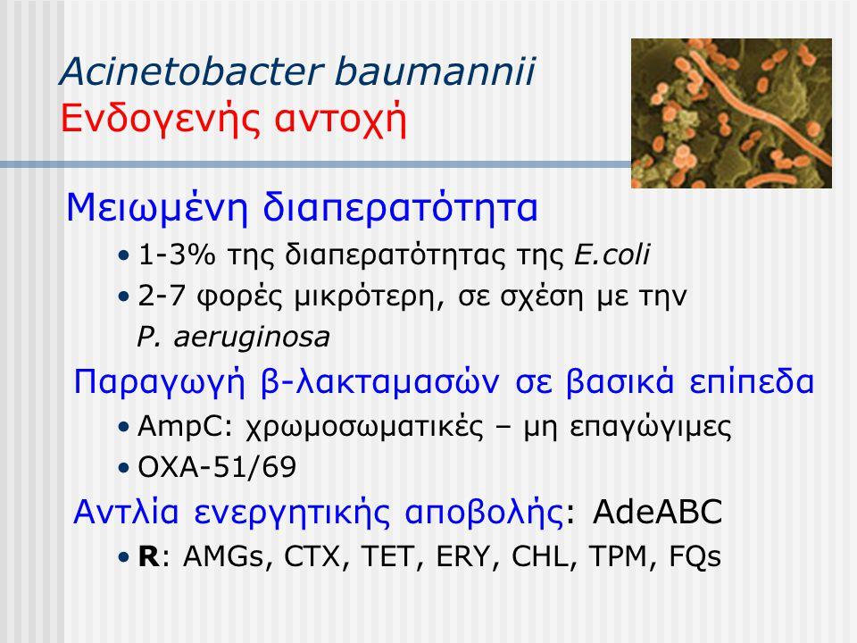 Acinetobacter baumannii Ενδογενής αντοχή Μειωμένη διαπερατότητα 1-3% της διαπερατότητας της E.coli 2-7 φορές μικρότερη, σε σχέση με την P. aeruginosa
