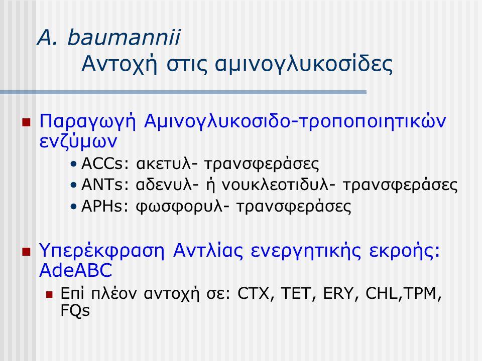 Α. baumannii Αντοχή στις αμινογλυκοσίδες Παραγωγή Αμινογλυκοσιδο-τροποποιητικών ενζύμων ACCs: ακετυλ- τρανσφεράσες ANTs: αδενυλ- ή νουκλεοτιδυλ- τρανσ