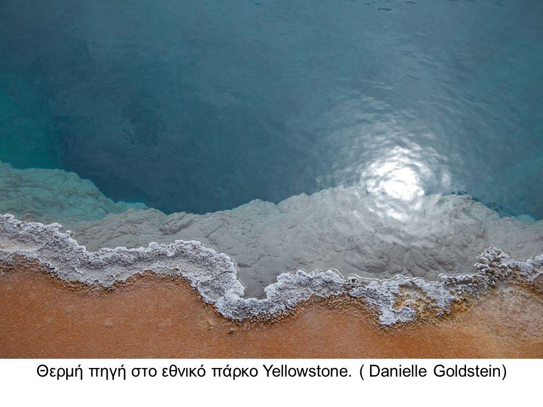 Θερμή πηγή στο εθνικό πάρκο Yellowstone. ( Danielle Goldstein)