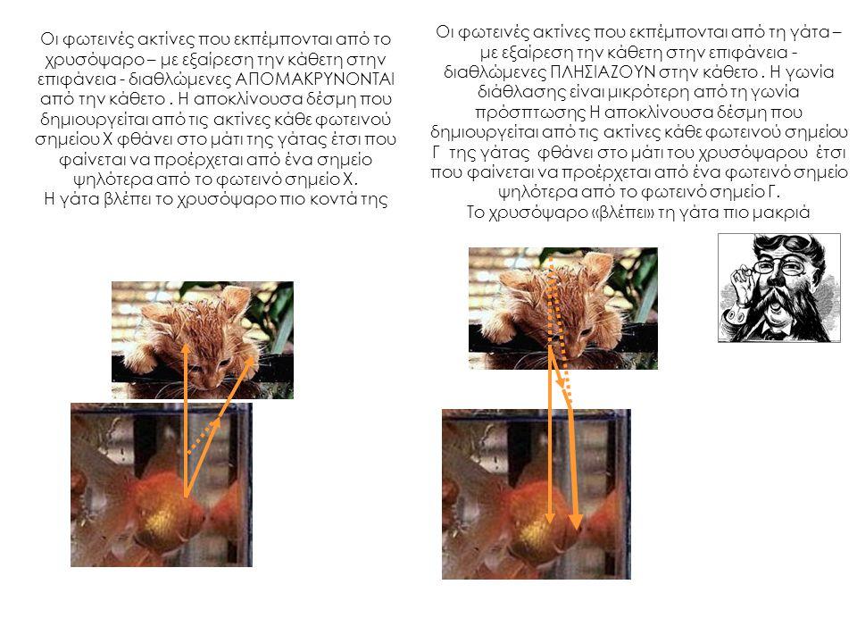 Οι φωτεινές ακτίνες που εκπέμπονται από το χρυσόψαρο – με εξαίρεση την κάθετη στην επιφάνεια - διαθλώμενες ΑΠΟΜΑΚΡΥΝΟΝΤΑΙ από την κάθετο. Η αποκλίνουσ