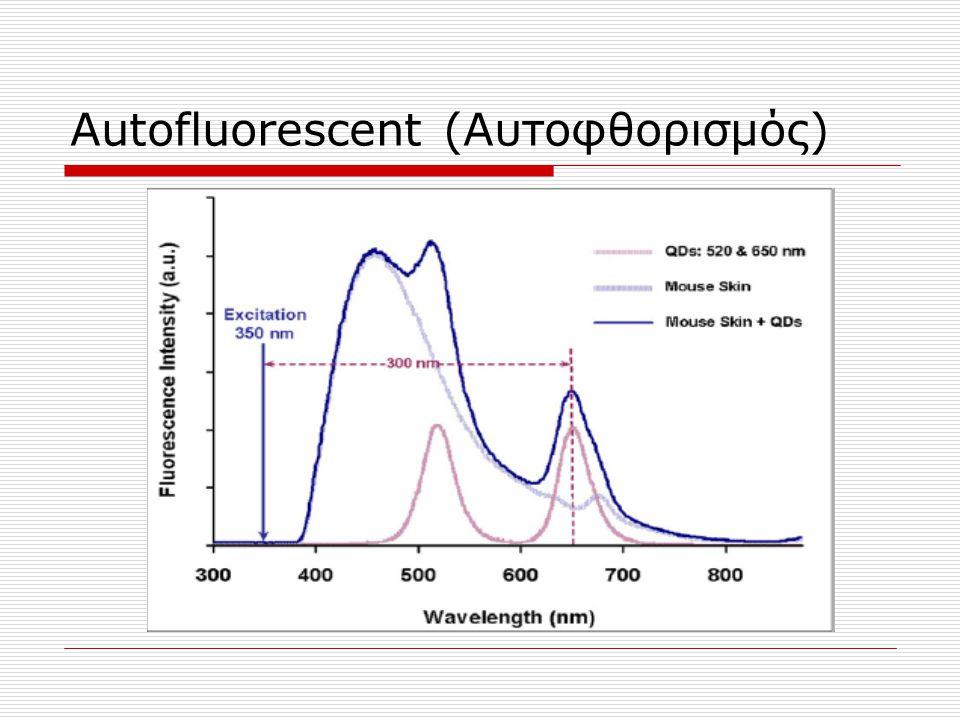 Αutofluorescent (Αυτοφθορισμός)