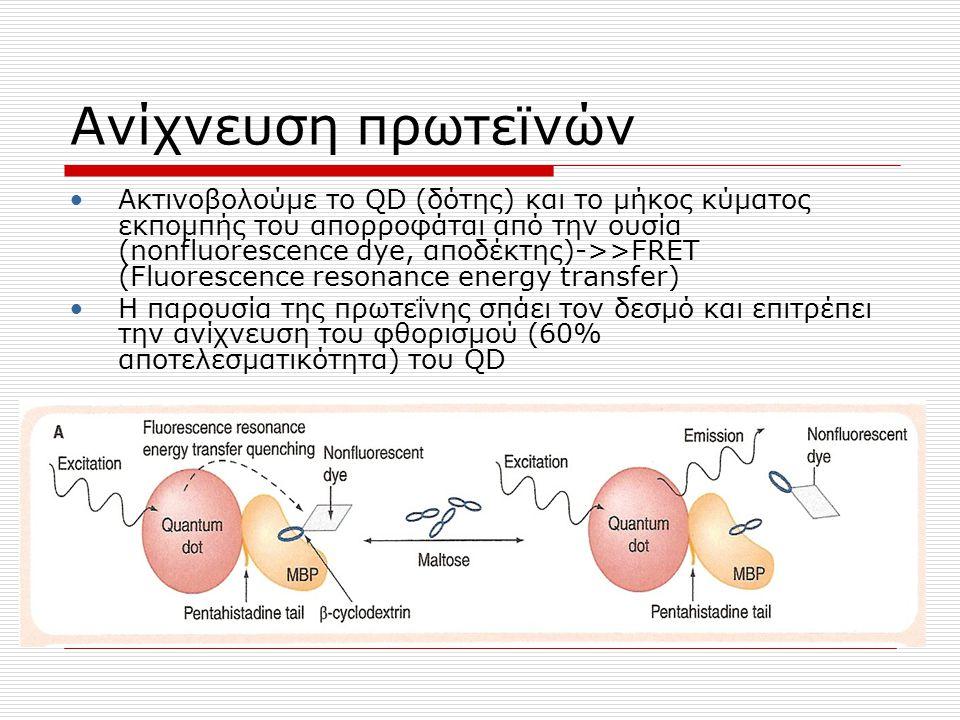 Ανίχνευση πρωτεϊνών Ακτινοβολούμε το QD (δότης) και το μήκος κύματος εκπομπής του απορροφάται από την ουσία (nonfluorescence dye, αποδέκτης)->>FRET (F