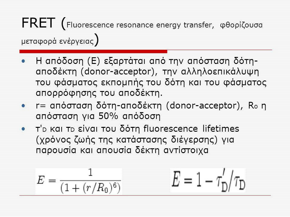 FRET ( Fluorescence resonance energy transfer, φθορίζουσα μεταφορά ενέργειας ) H απόδοση (Ε) εξαρτάται από την απόσταση δότη- αποδέκτη (donor-acceptor