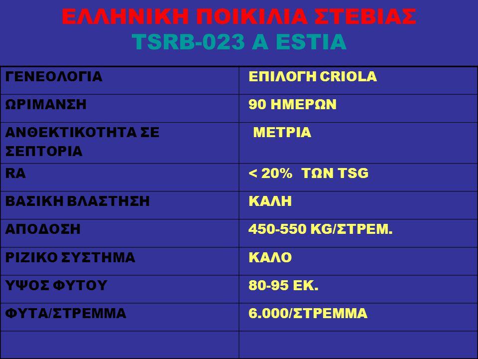 ΕΛΛΗΝΙΚΗ ΠΟΙΚΙΛΙΑ ΣΤΕΒΙΑΣ TSRB-023 A ESTIA ΓΕΝΕΟΛΟΓΙΑ ΕΠΙΛΟΓΗ CRIOLA ΩΡΙΜΑΝΣΗ 90 ΗΜΕΡΩΝ ΑΝΘΕΚΤΙΚΟΤΗΤΑ ΣΕ ΣΕΠΤΟΡΙΑ ΜΕΤΡΙΑ RA < 20% ΤΩΝ TSG ΒΑΣΙΚΗ ΒΛΑΣΤΗΣΗ ΚΑΛΗ ΑΠΟΔΟΣΗ 450-550 KG/ΣΤΡΕΜ.
