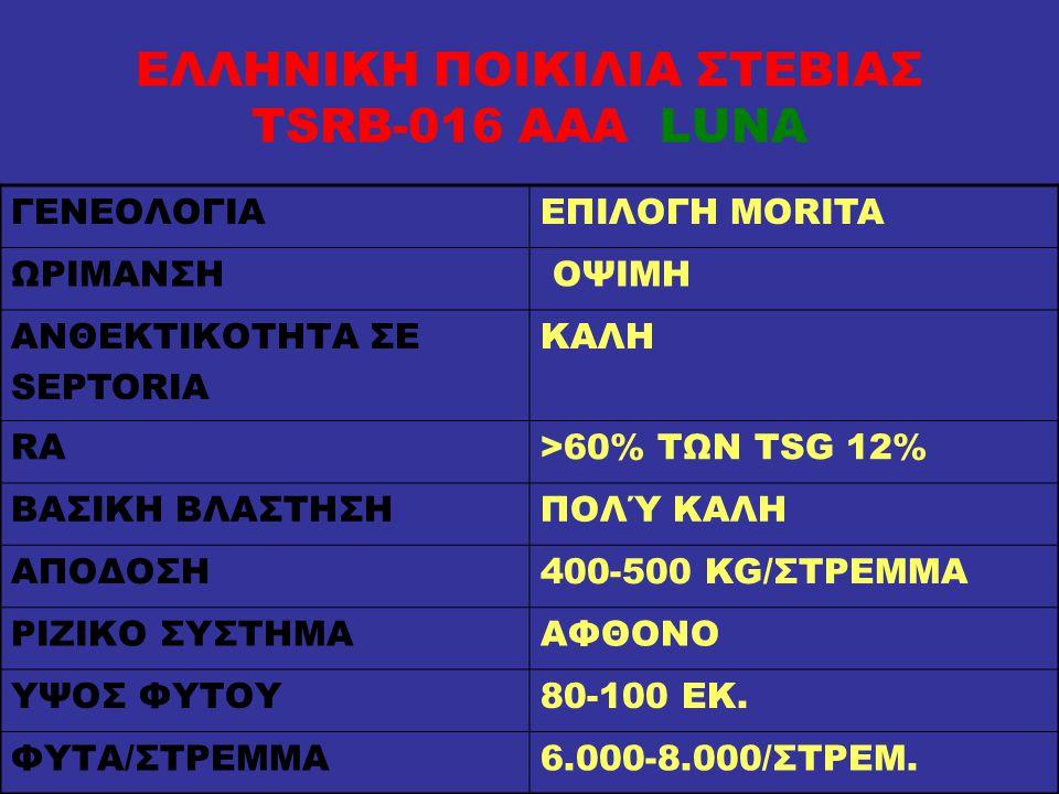 ΕΛΛΗΝΙΚΗ ΠΟΙΚΙΛΙΑ ΣΤΕΒΙΑΣ TSRB-016 AAA LUNA ΓΕΝΕΟΛΟΓΙΑΕΠΙΛΟΓΗ MORITA ΩΡΙΜΑΝΣΗ ΟΨΙΜΗ ΑΝΘΕΚΤIΚΟΤHΤΑ ΣΕ SEPTORIA ΚΑΛΗ RA>60% ΤΩΝ TSG 12% ΒΑΣΙΚΗ ΒΛΑΣΤΗΣΗΠ