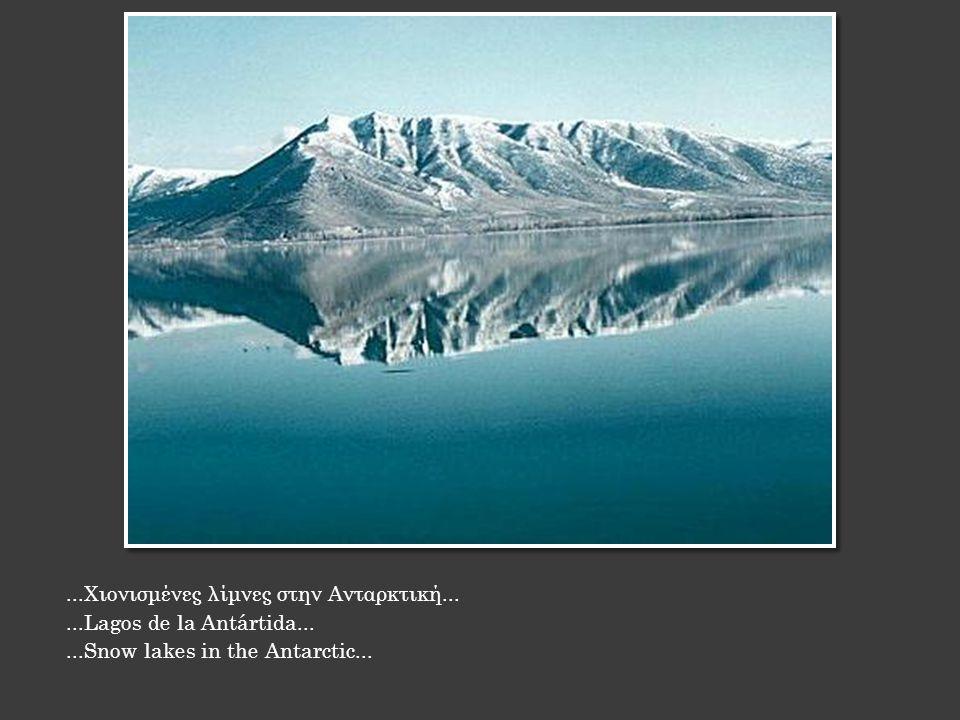 ...Χιονισμένες λίμνες στην Ανταρκτική......Lagos de la Antártida......Snow lakes in the Antarctic...