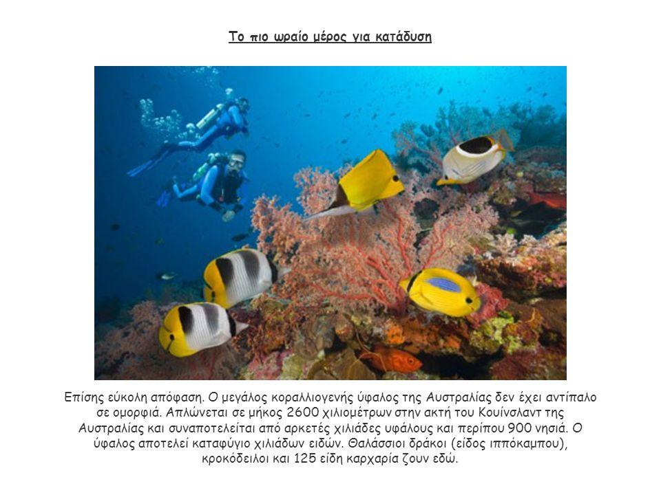 Το πιο ωραίο μέρος για κατάδυση Επίσης εύκολη απόφαση. Ο μεγάλος κοραλλιογενής ύφαλος της Αυστραλίας δεν έχει αντίπαλο σε ομορφιά. Απλώνεται σε μήκος