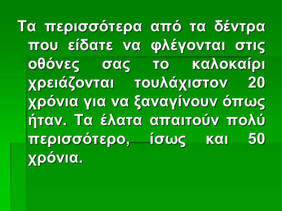 Το ΠΡΙΝ και το ΜΕΤΑ το πράσινο στη ζωή μας, χαρά Θεού κενό, γυμνό τοπίο και απόγνωση...