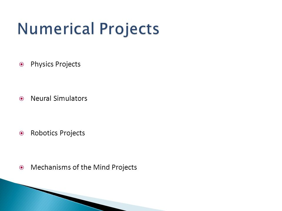  Physics Projects  Neural Simulators  Robotics Projects  Mechanisms of the Mind Projects