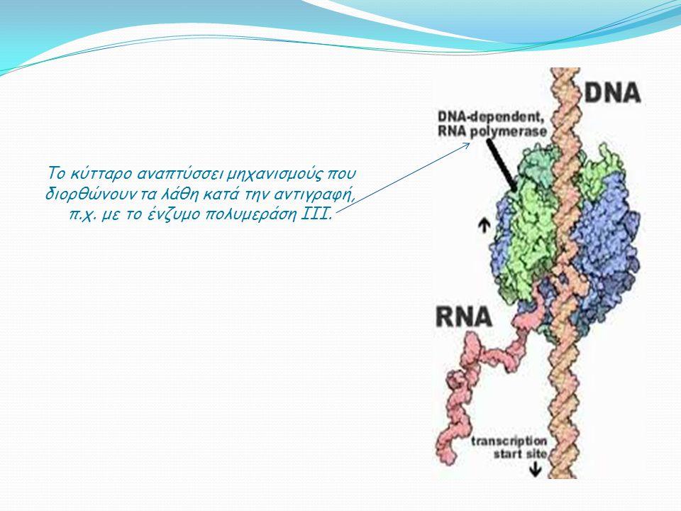 Το κύτταρο αναπτύσσει μηχανισμούς που διορθώνουν τα λάθη κατά την αντιγραφή, π.χ. με το ένζυμο πολυμεράση III.