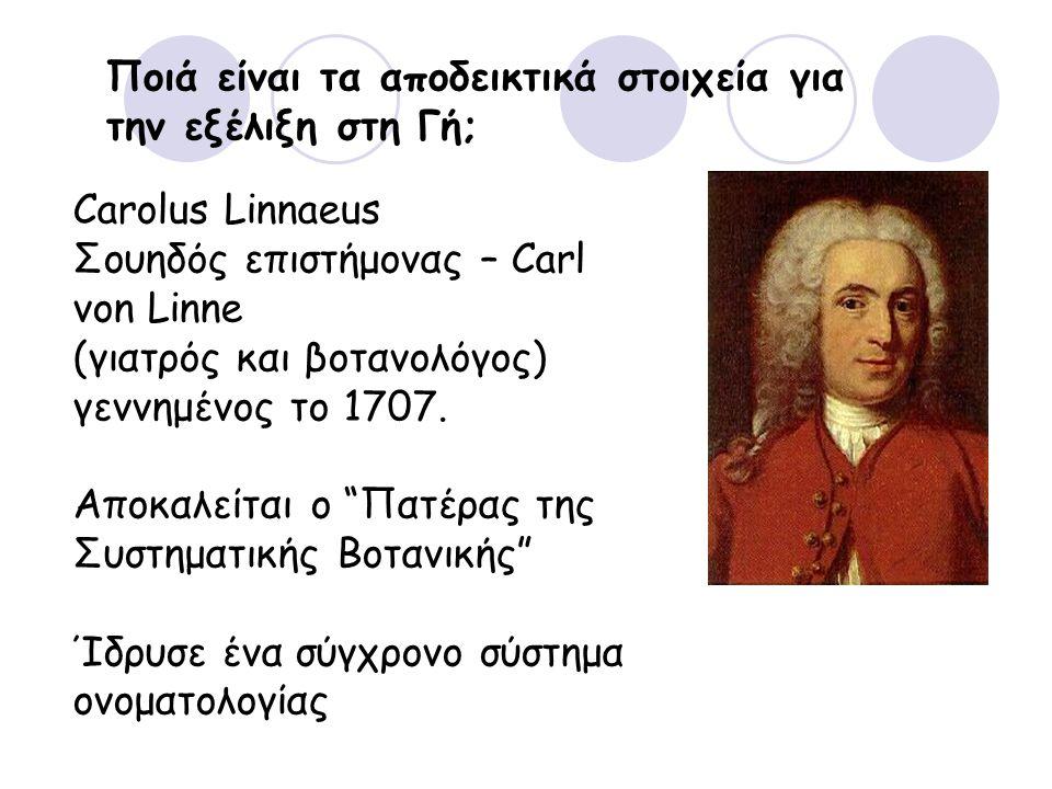 Ποιά είναι τα αποδεικτικά στοιχεία για την εξέλιξη στη Γή; Carolus Linnaeus Σουηδός επιστήμονας – Carl von Linne (γιατρός και βοτανολόγος) γεννημένος το 1707.