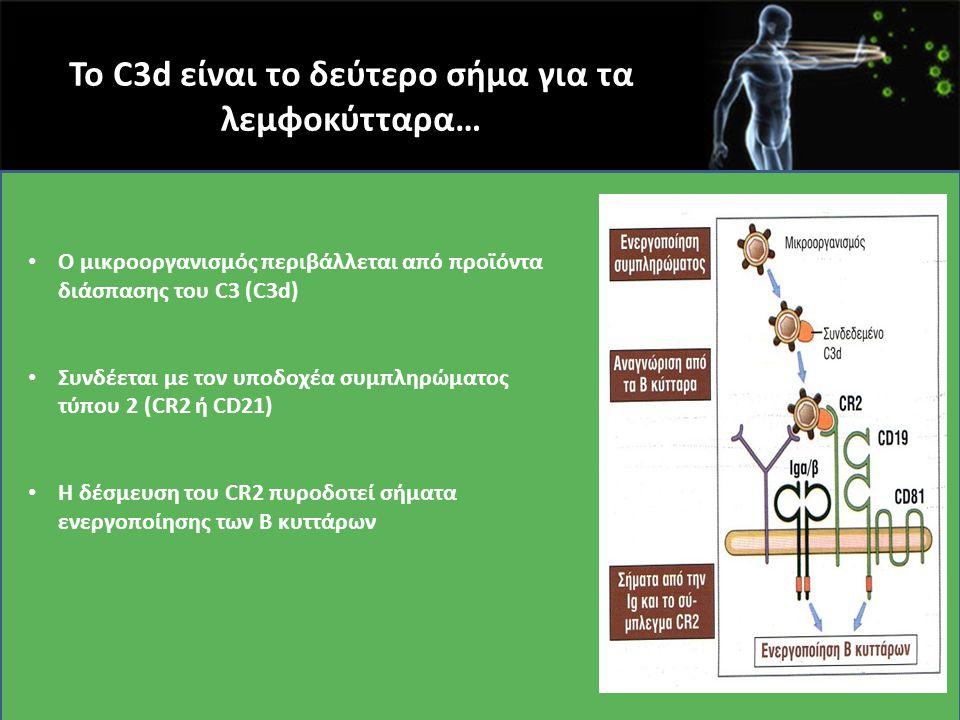 Το C3d είναι το δεύτερο σήμα για τα λεμφοκύτταρα… Ο μικροοργανισμός περιβάλλεται από προϊόντα διάσπασης του C3 (C3d) Συνδέεται με τον υποδοχέα συμπληρ