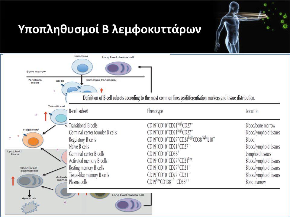 Υποπληθυσμοί Β λεμφοκυττάρων