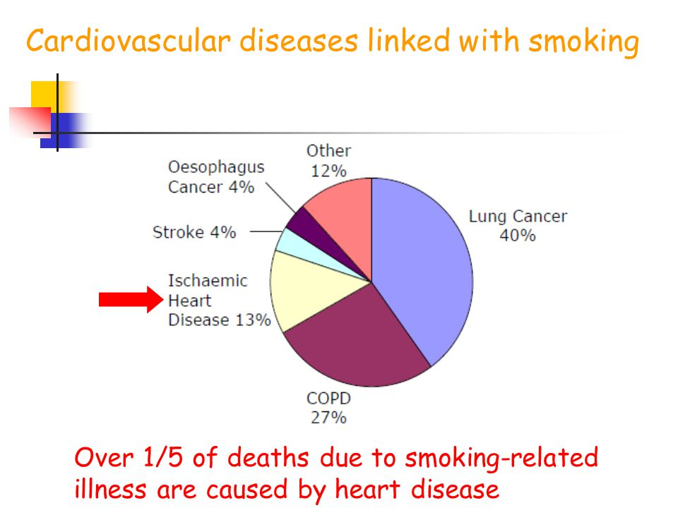 Cardiovascular diseases linked with smoking Over 1/5 of deaths due to smoking-related illness are caused by heart disease