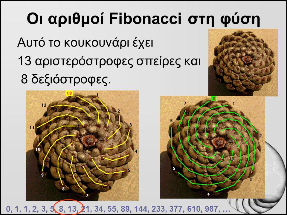 Οι αριθμοί Fibonacci στη φύση Αυτό το κουκουνάρι έχει 13 αριστερόστροφες σπείρες και 8 δεξιόστροφες. 0, 1, 1, 2, 3, 5, 8, 13, 21, 34, 55, 89, 144, 233