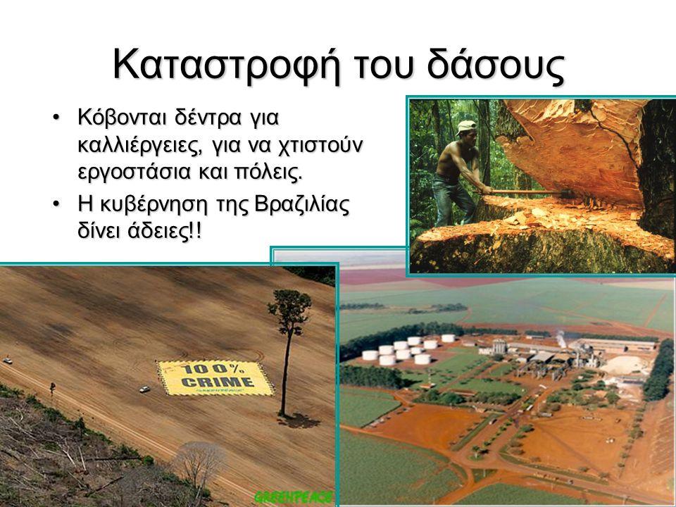 30 Καταστροφή του δάσους Κόβονται δέντρα για καλλιέργειες, για να χτιστούν εργοστάσια και πόλεις.Κόβονται δέντρα για καλλιέργειες, για να χτιστούν εργ