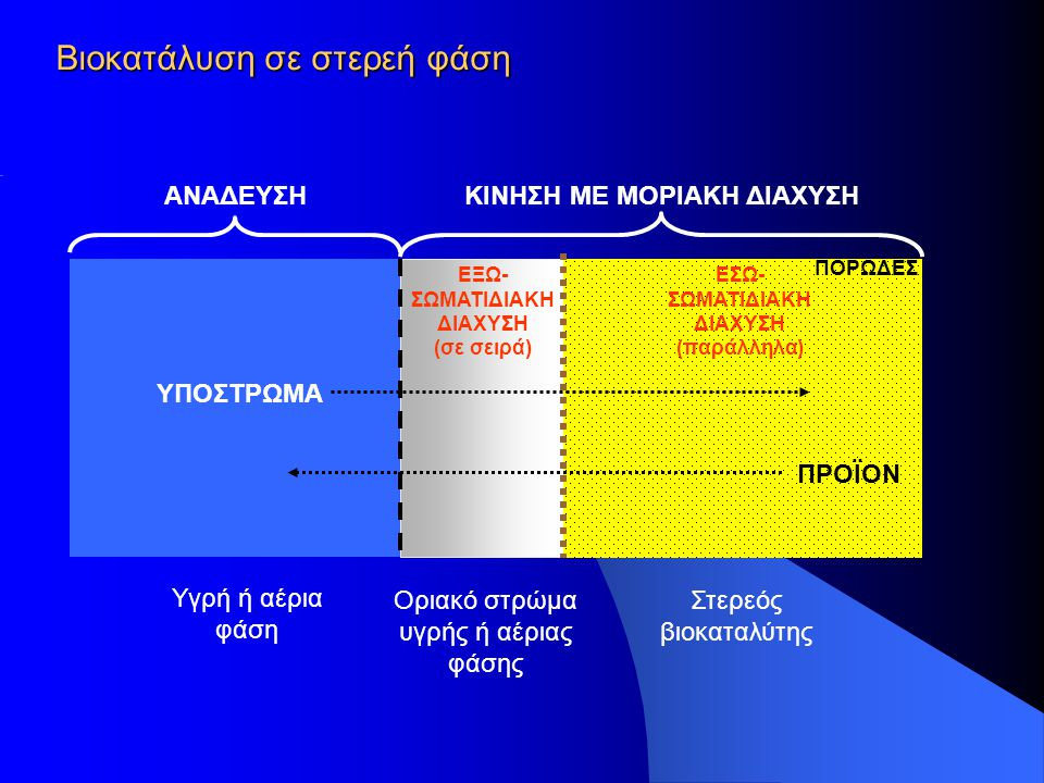 Βιοκατάλυση σε στερεή φάση Υγρή ή αέρια φάση Στερεός βιοκαταλύτης ΥΠΟΣΤΡΩΜΑ ΚΙΝΗΣΗ ΜΕ ΜΟΡΙΑΚΗ ΔΙΑΧΥΣΗΑΝΑΔΕΥΣΗ ΕΣΩ- ΣΩΜΑΤΙΔΙΑΚΗ ΔΙΑΧΥΣΗ (παράλληλα) Ορι