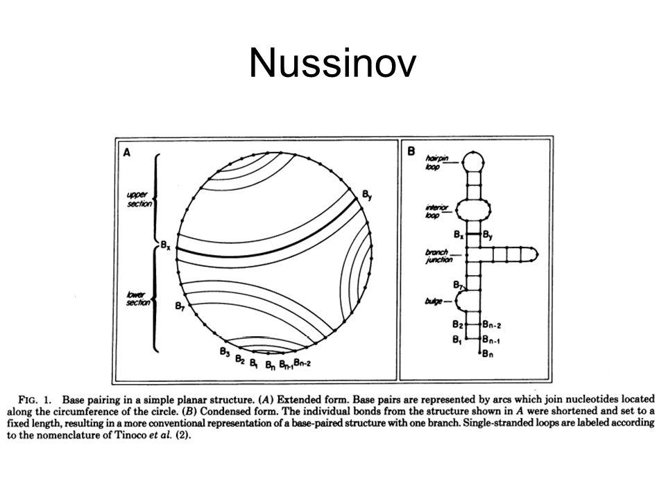 Nussinov